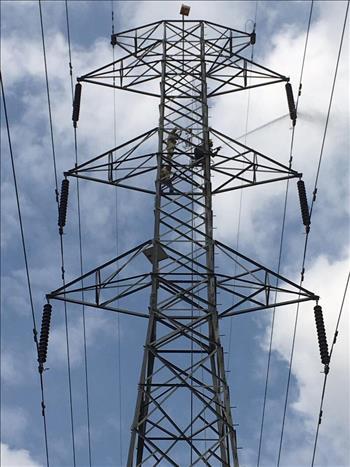 Truyền tải điện miền Tây 3 triển khai công tác vệ sinh hotline.