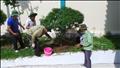 Truyền tải điện miền Tây 1 tổ chức hoạt động kỷ niệm 129 năm Ngày sinh Chủ tịch Hồ Chí Minh.