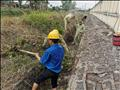 Công trình thanh niên: Tạo môi trường xanh, sạch, đẹp cho trạm 220kV Xuân Lộc.