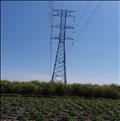 Đảm bảo cung cấp điện mùa khô năm 2020 cho miền Nam