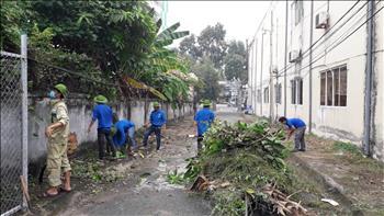 Truyền tải điện miền Tây 1 tổ chức tổng vệ sinh khu vực Văn phòng.