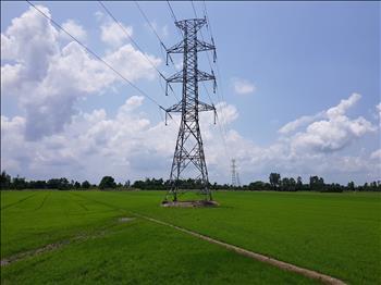 Khẩn trương hoàn thành nâng tải đường dây 220kV Thốt Nốt – Long Xuyên – Châu Đốc