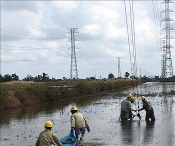 Chủ động và tích cực trong công tác vận hành đảm bảo an toàn hệ thống lưới truyền tải điện mùa mưa bão.