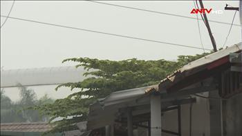 Mái tôn, bạt và nỗi lo mất an toàn lưới điện truyền tải